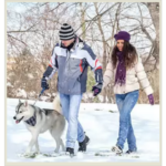 6 советов как выгуливать собак зимой, в морозную и снежную погоду