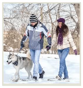 прогулка с собакой зимой