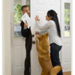 Как отучить собаку лаять на дверь?