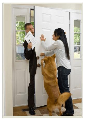 собака лает на дверь