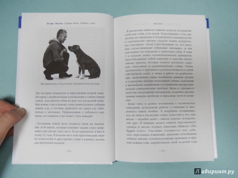 одна из страниц книги