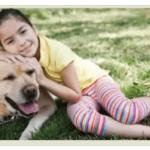 Мифы о кастрации и стерилизации собак