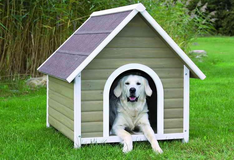 домики для собак мелких пород