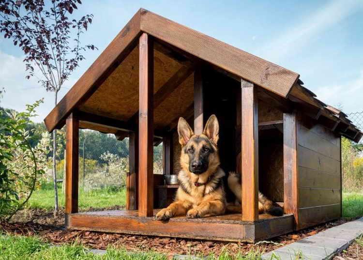 домик для собаки в квартиру